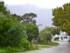 Berg en Dal Security Estate | Driveway